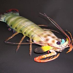 Manta Shrimp Sculpture [approx. 16in]