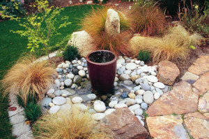 Water feature and drought-hardy plantings
