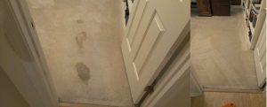 CitruSolution Carpet Cleaning