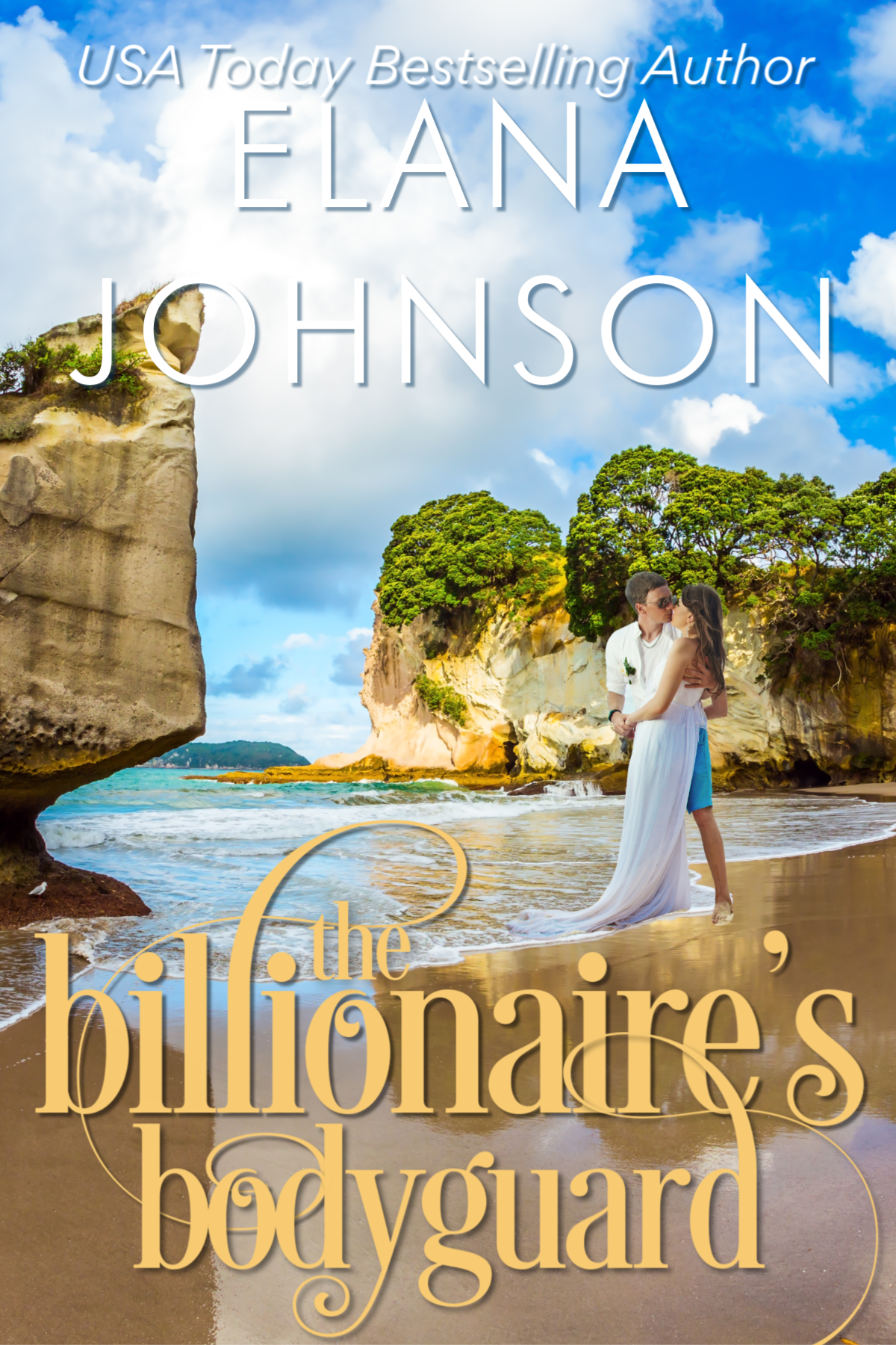 Billionaire's Bodyguard New Cover (FINAL)