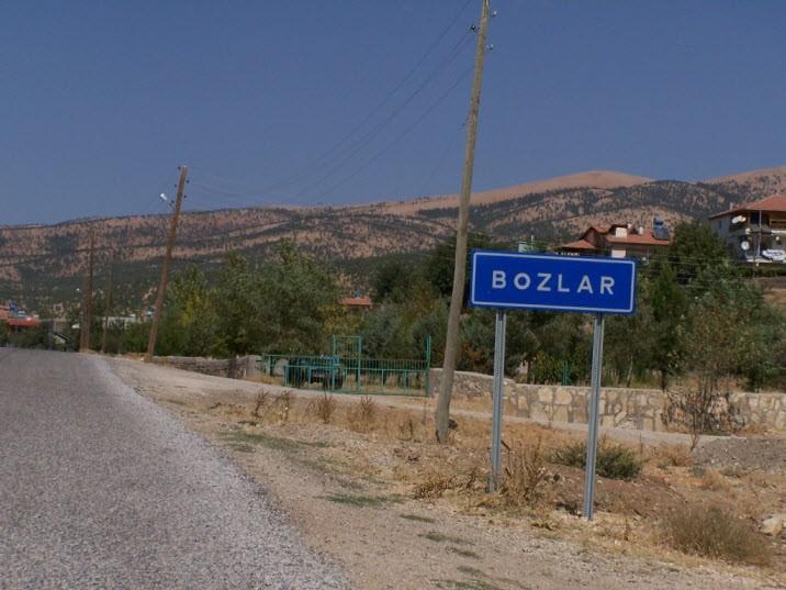 Bozlar2