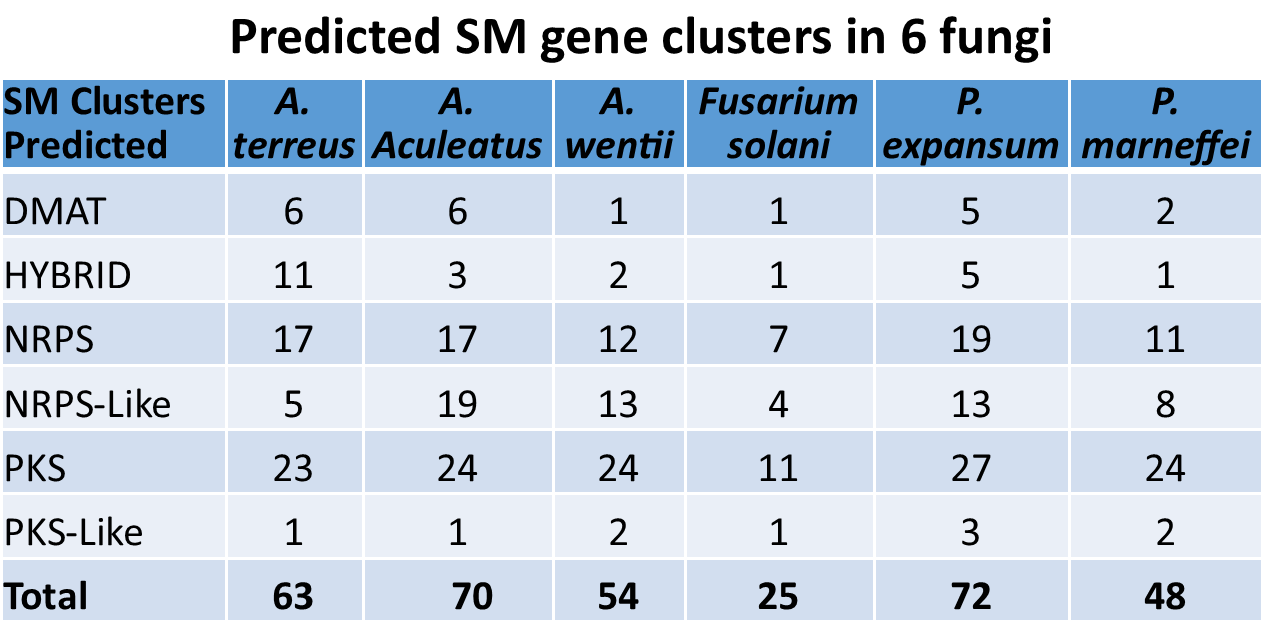 Predicted SM gene cluster in 6 fungi
