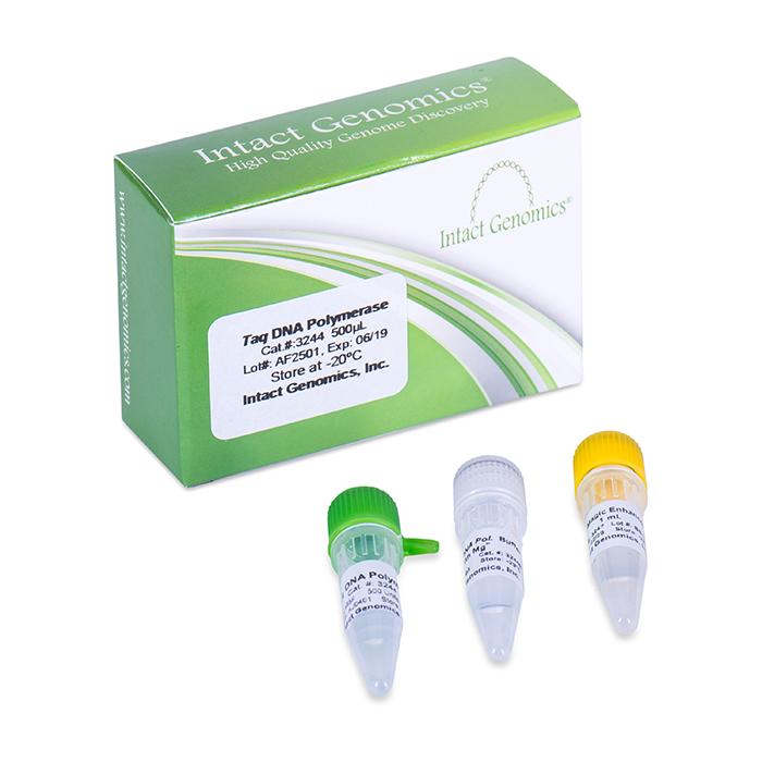 Taq DNA Polymerase