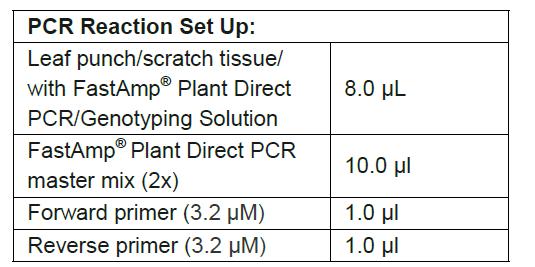 FastAMp Plant Direct PCR Set up