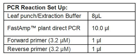Plant Direct PCR Reaction Set up