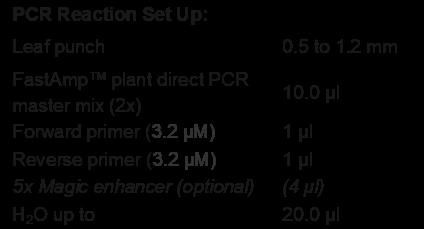 Plant Direct PCR Reaction Setup