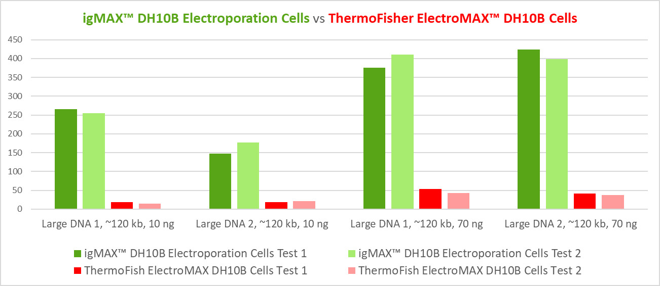 igMax DH10B Competent Cells