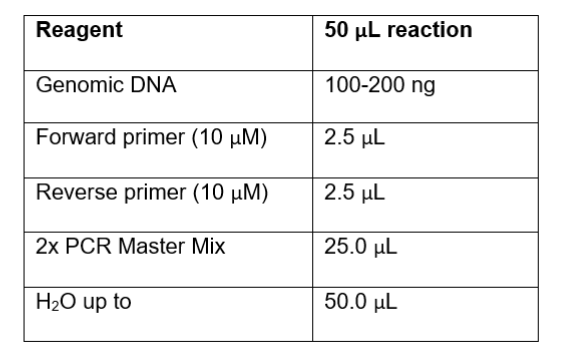 T7 Endonuclease Reaction Volumes