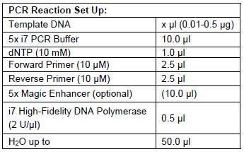 High Fidelity DNA Polymerase PCR Set up