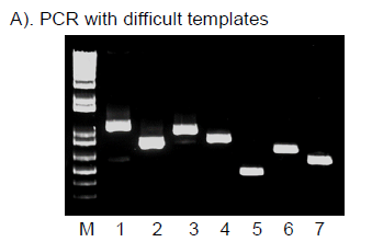 Hot Start High Fidelity DNA Polymerase I7 image PCR difficult template