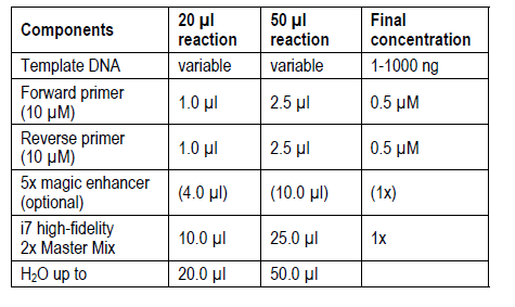 High Fidelity DNA Polymerase PCR Master Mix Reaction Set up