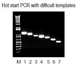 Hot Start i7 High-Fidelity DNA Polymerase 2x Master Mix Difficult Templates