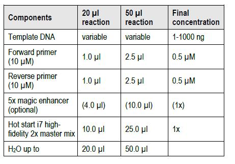 Hot-Start-i7-High-Fidelity-DNA-Polymerase-2x-Master-Mix-Reacton-Set-up