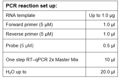 PCR-Reaction-Set-Up-RT-qPCR-Probe-based