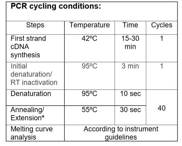 PCR-cycling-conditions-Covid-19-RT-qPCR-Probe-based