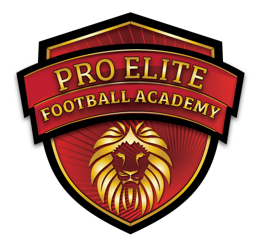 Pro Elite Football Academy