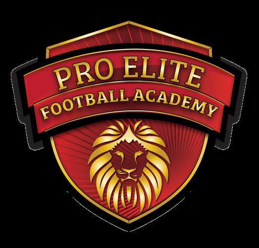 Pro Elite Football Academy