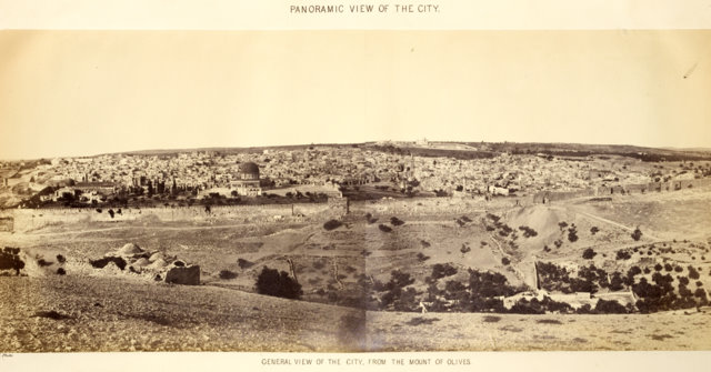 General View of the City 2.jpg