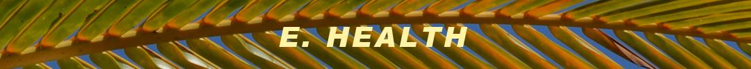 e-health-banner