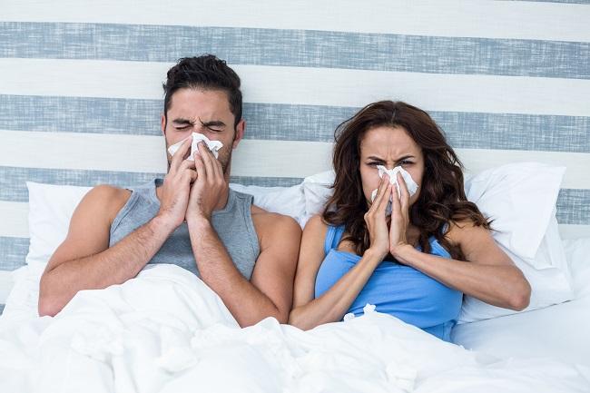 Seasonal Allergies: Round 3