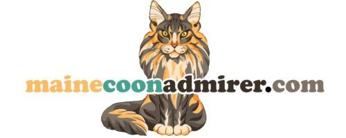 Maine Coon Cats Perfect for Families