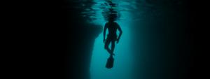 Freediving Cenotes