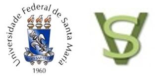 UFSM-SV_Logo