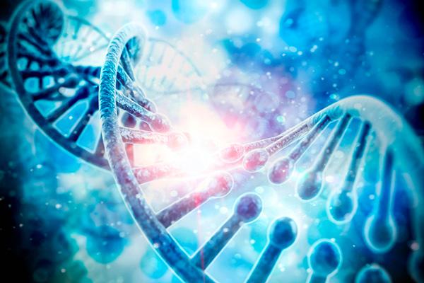 OB Education - Genetic Screening