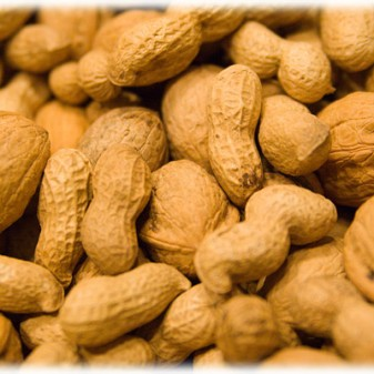 Food Allergies 101