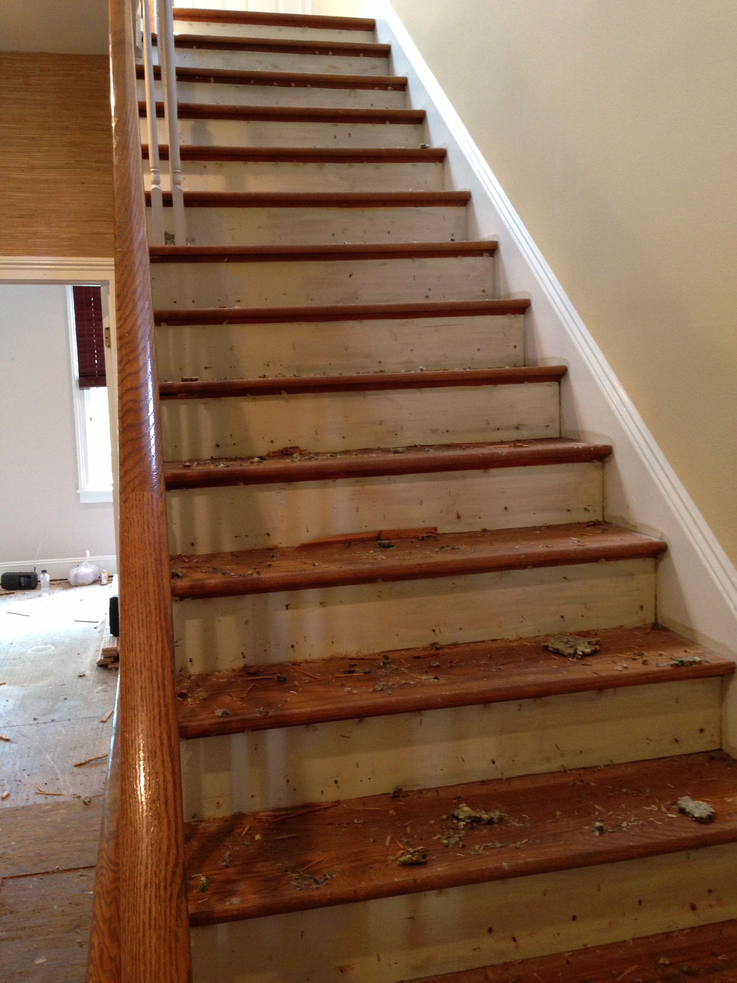 A photo a hardwood stair treads prior to refinishing.