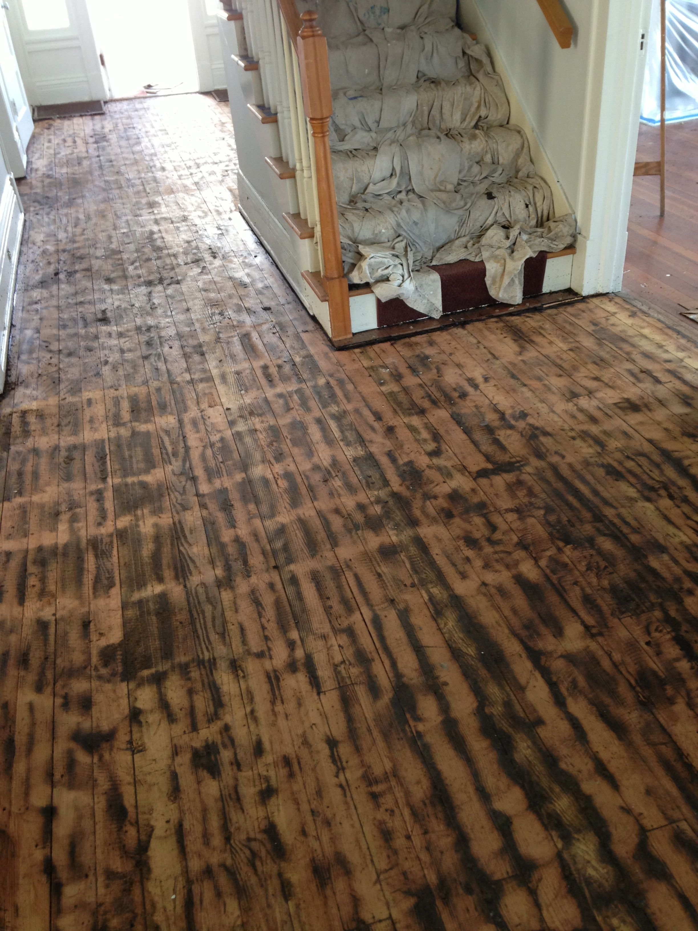 Pictured are hardwood floors partially covered with tar.