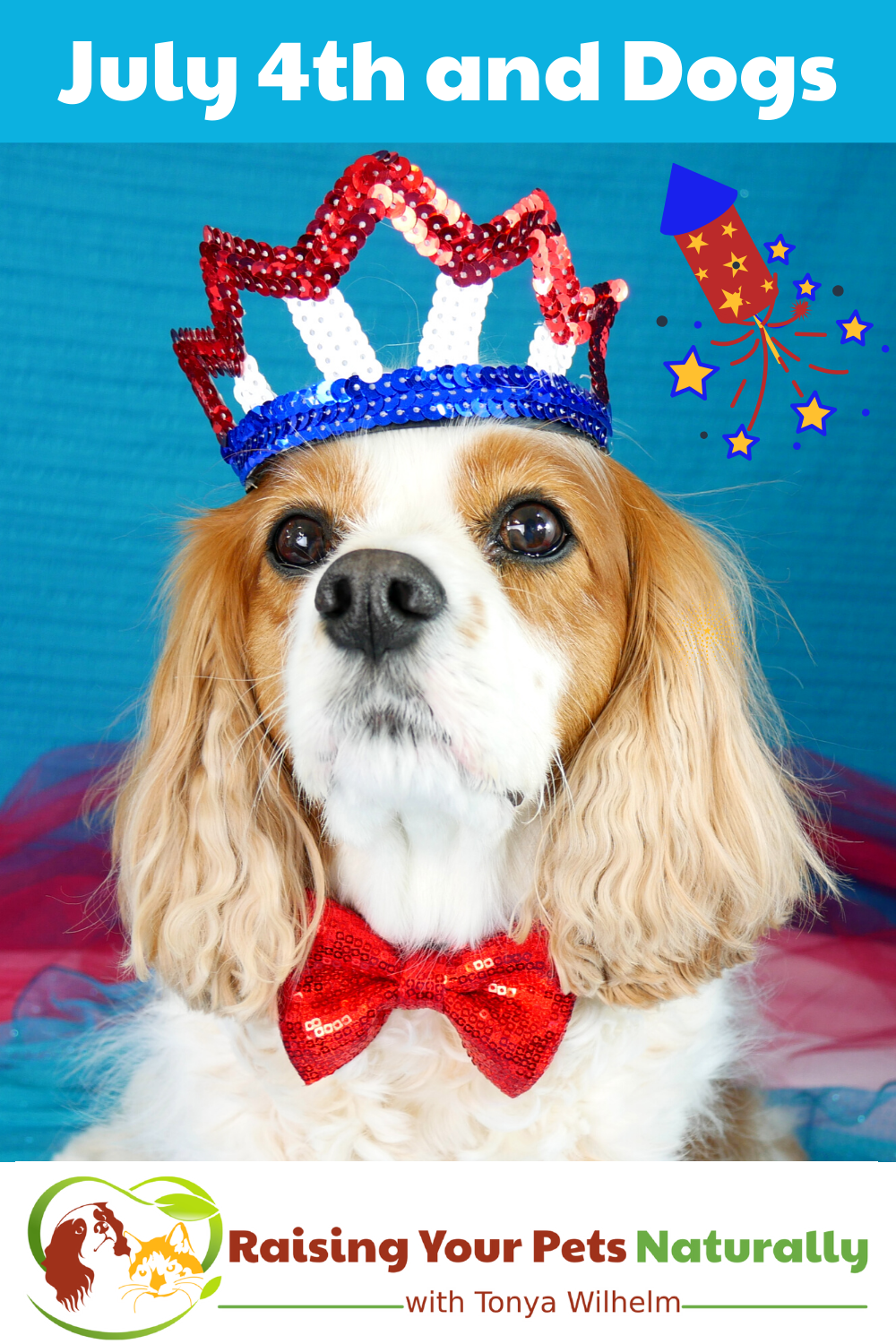 4th of July With Dogs Tips | Dogs Afraid of 4th of July Fireworks (Early access for our Patreon community)