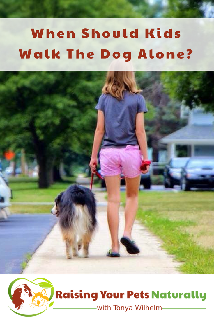 Kids and pets, dogs and kids. I love them both! But, when it comes to our children and dogs we do need to be aware and keep both safe. At what age should a kid be able to walk the dog alone? Read more. #raisingyourpetsnaturally #kidsdogs #dogsandkids #childrenanddogs