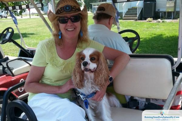 Pet-Friendly Golf Carts in Put-I-Bay