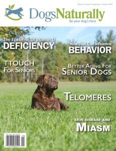 Alternative Dog Trainer