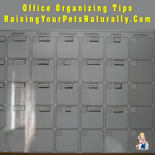 Office Organization Tools