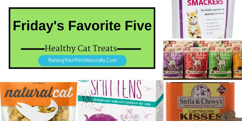 Healthy Cat Treats