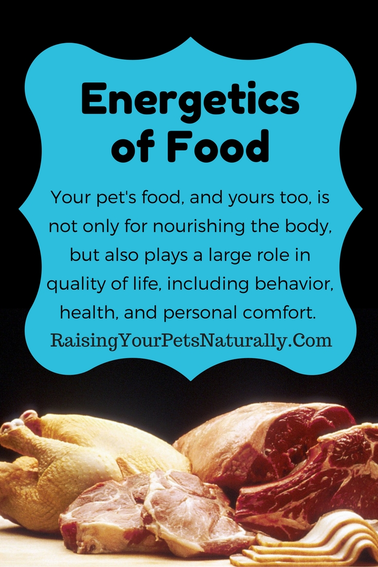 Food Energetics. Your pet's food and yours too is not only for nourishing the body but also plays a large role in the quality of life, including behavior, health, and personal comfort. #raisingyourpetsnaturally