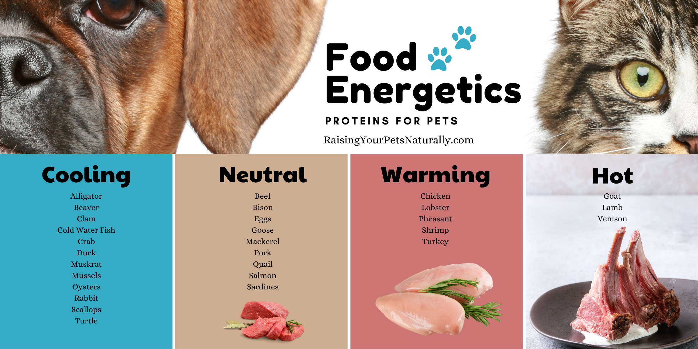 Energetics of various proteins for pets