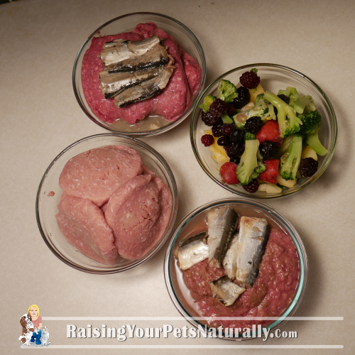 Healthy and natural cat food recipes