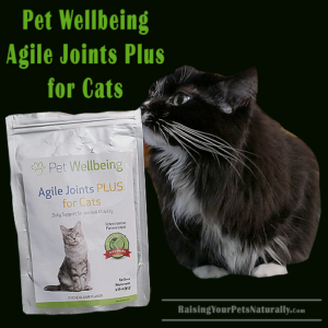 Joint Supplements for Cats