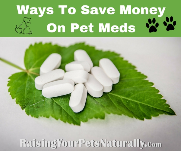 Learn how to save money on your pet's medication when you find your pet does need the help of pharmaceuticals. #raisingyourpetsnaturally