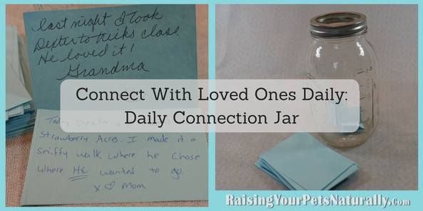 Instead of putting weekly good things that happened, I want you to put DAILY connecting with another inside your jar. When I think of connecting with people or connecting with our pets, I think of putting away all distractions (TV, cell phones, internet) and really just being in the moment with the other person or your pet.