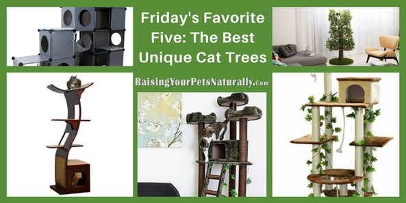 Friday's Favorite Five: The Best Unique Cat Trees. Cats love to be in high places. You may see your cat up on the counter, windowsill, high cabinet, or even on your refrigerator. Being high allows a cat to view his world from a relatively safe location. Maybe the reason cats want to be high up is from their ancestral days, when they climbed trees to escape other predators or to hunt their prey from concealment. Although the house cat does not have to hunt his prey, some do still enjoy the security of being high, especially when under stress from their home environment. For today's Friday's Favorite Five, I thought it would be fun to highlight five fun and modern cat trees.