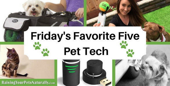 You may be a bit like me: you love technology on one hand, but hate it when it fails or you are trying to figure out how to use it. But, love it or hate it, technology can be so helpful in our pets' lives. Some pet-tech items are just pure fun and others have the potential to save their lives or find them if they get lost. Here are 5 pet-tech items you just may need to buy.