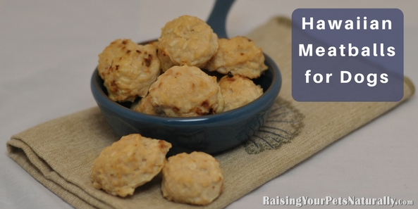 Healthy and Homemade Dog Treat Recipes | Hawaiian Meatballs for Dogs. Recipe from my dog treat cookbook, Dexter's Delights. #raisingyourpetsnaturally