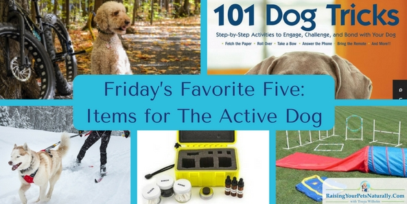 Friday's Favorite Five: Items for The Active Dog. Do you have an active dog or active dogs on your hands? There are many active dog breeds, including small active dogs. Keeping these dogs both mentally and physically busy and engaged is key to living with them and enjoying their company. In today's Friday's Favorite Five you will find active dog toys and dog-friendly activities to do with your dog.