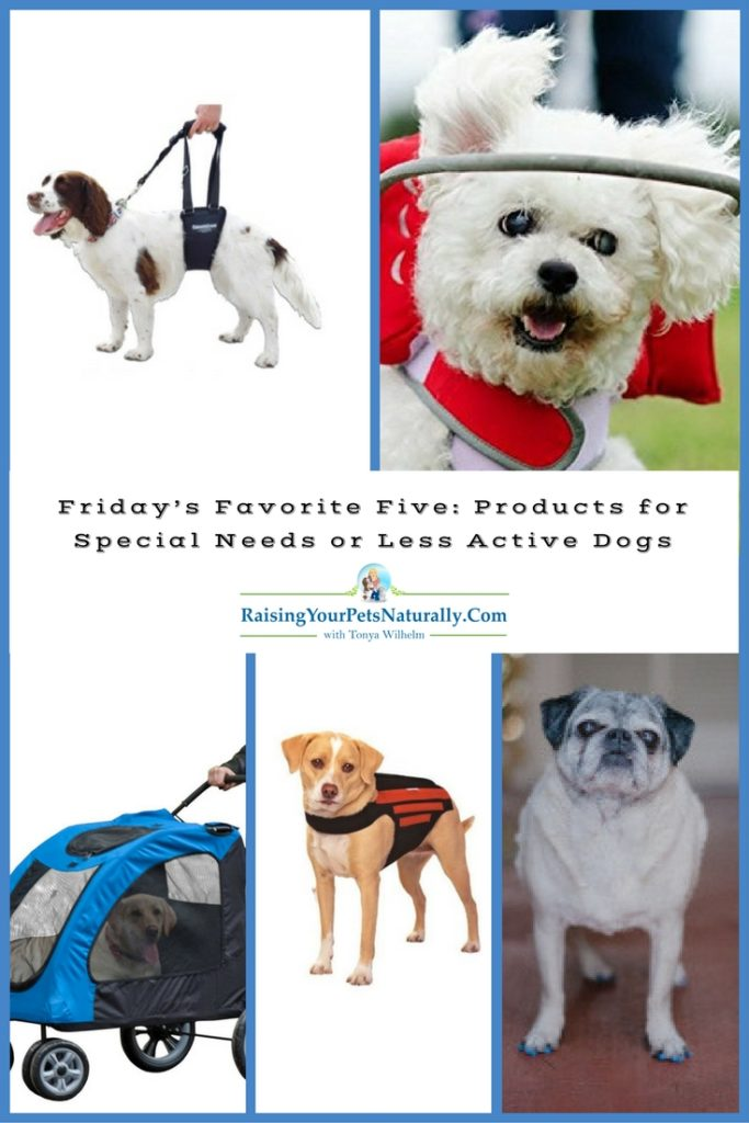 Friday's Favorite Five: Products for Special Needs or Less Active Dogs. All dogs are special and have their own behavior, health, and activity requirements. Some dogs are what we may consider special-needs dogs or senior dogs that may need a little help with their daily lives or activities. This, however, does not mean that these dogs do not deserve to lead a happy, fun, and healthy lifestyle.