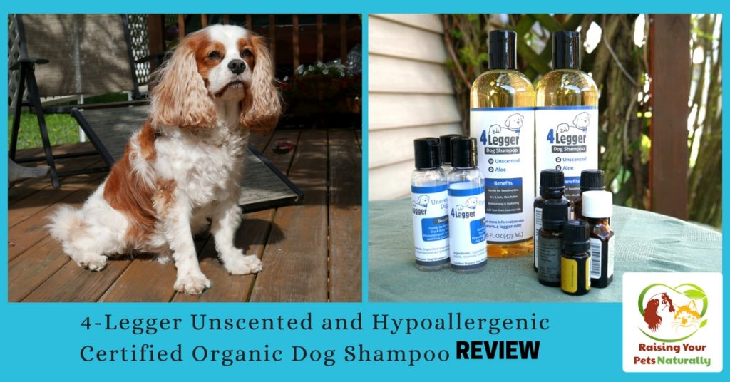 Best Dog Shampoo for Dog Allergies. Dog skin allergies can be tricky to cure. Learn how this natural dog shampoo can help stop your dog from itching. Click to stop the itch.