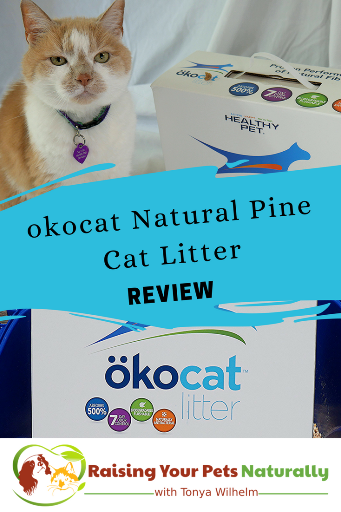 Not all cat litter is created equal. Most cat litters can be harmful to your cat. Read my review of one of my favorite natural cat litters, okocat. #raisingyourpetsnaturally